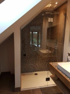 Hinged glass shower door sloping roof